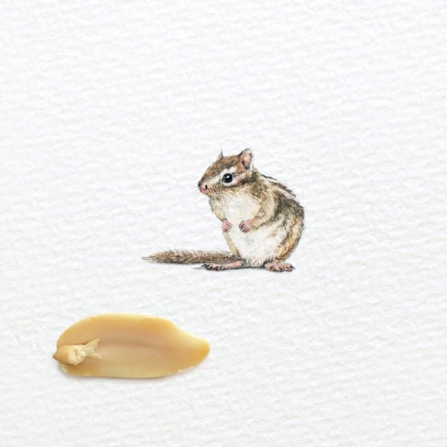 12-Chipmunk-Frank-Holzenburg-www-designstack-co