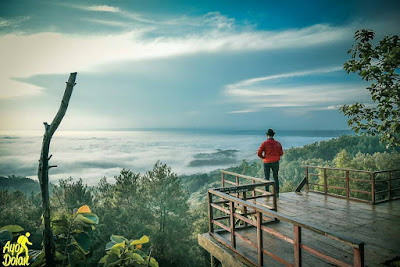 Lokasi Gardu Pandang Pinus Asri Karangasem, Spot Foto Favorit di Jogja