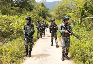TNI Gunakan Drone Saat Intai 2 Anggota KKB yang Kabur ke Papua Nugini