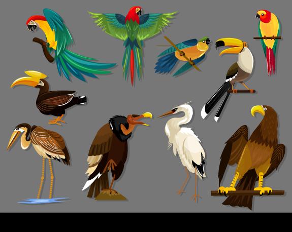 Ilustraciones icónicas de Pájaros