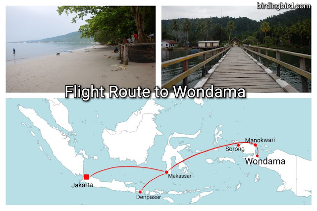 recommended tourist destination in West Papua
