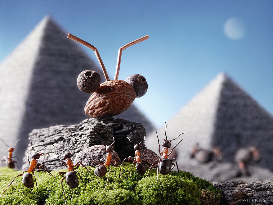 13-The-Big-Giant-Head-The-Sphinx-Andrey-Pavlov-Photographs-of-Ants-an-Affordable-Journey-to-a-Parallel-World