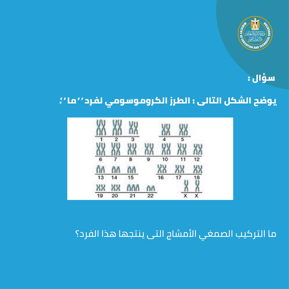 نماذج الأسئلة الجديدة لامتحان الأحياء وطريقة الاجابة للصف الأول الثانوى مايو 2019 من الوزارة 13