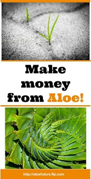 MAKE MONEY FROM ALOE