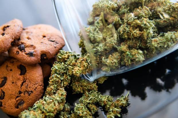 Marijuana goes through rigorous checks in the Silver State
