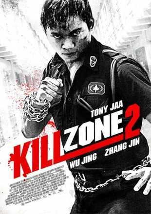 Kill Zone 2 2015 BRRip 720p Dual Audio In Hindi Chinese