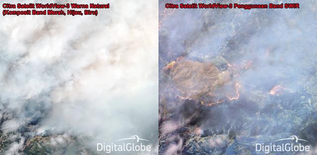 Citra Satelit WorldView-3 Warna Natural (Kiri) dengan Citra Satelit WorldView-3 Menggunakan Band SWIR (Kanan) Pada Area yang Mengalami Kebakaran