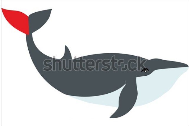 web design illustrator or photoshop,Sea life, whales, dolphins icons collection eps 10