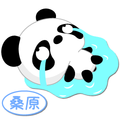 Mr. Panda for KUWAHARA only [ver.1]