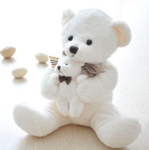 Cute White Teddy Bear Wallpaper