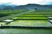 NTB Bisa Masuk Program Food Estate untuk Ketahanan Pangan.