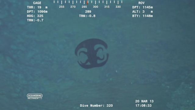 Alien sea creature in the Indian ocean.