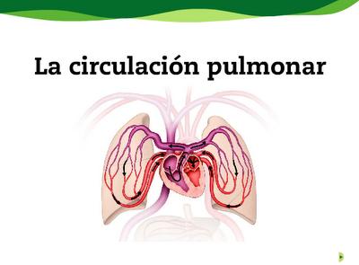 http://www.e-vocacion.es/resources/biblioteca/html/143315/recursos/la/U02/pages/recursos/143315_P26.html