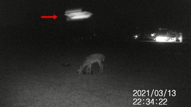 High speed UFO passes field camera?? Ufo-uap-sky-phenomenon