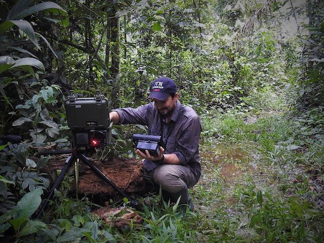 Fernando Mateos-Gonzalez BBC Natural History Unit