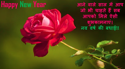 happy rose day pictures in hindi with new year