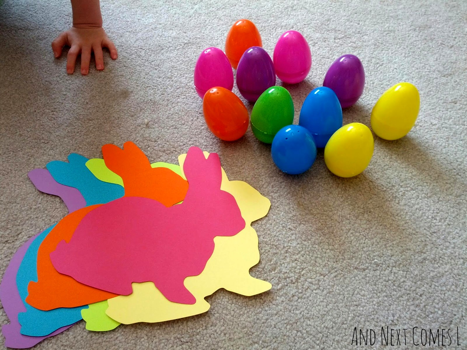 Egg Color Matching Activity