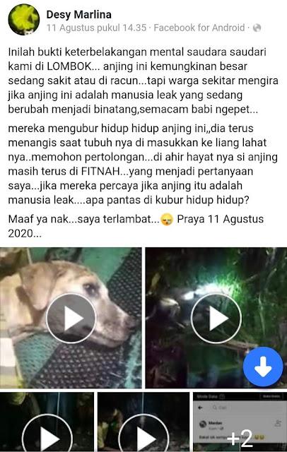Heboh Bocah di Lombok Berubah Jadi Anjing Gara-gara Ilmu Hitam, Ini Fakta Sebenarnya