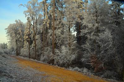 Winter, mùa đông, tél, dimër, zima, зима, 冬季, talv, talvi, hiver, χειμώνας, inverno, ウィンター, ziema, žiema, iarnă, зима, vinter, zimné, invierno, zimní, kış, tél,