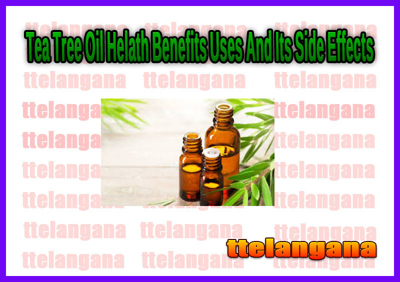 Tea Tree Oil Helath Benefits Uses And Its Side Effects