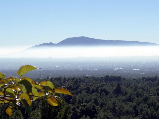 Προβλήματα στην υγεία με την αιθαλομίχλη από την καύση των ξύλων