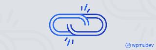 broken link checker plugin