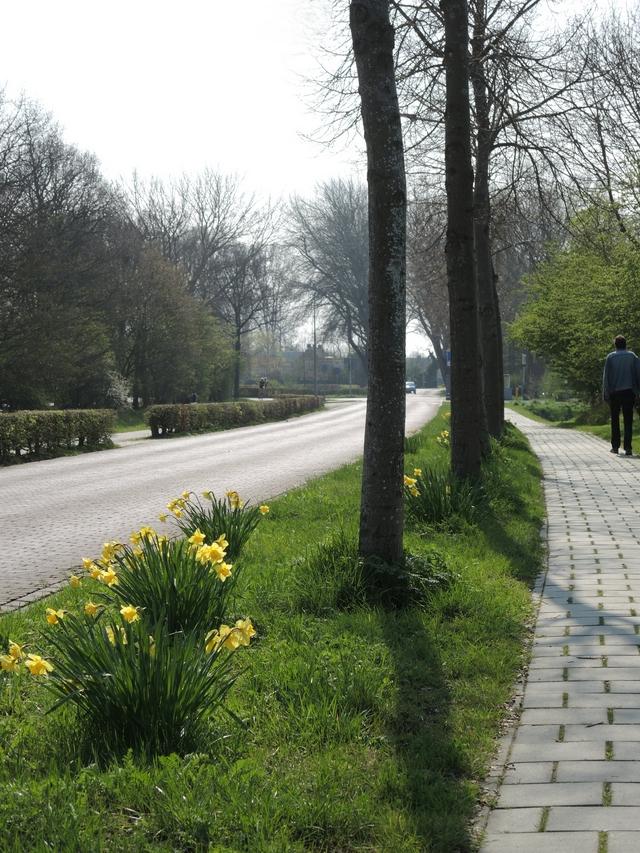 lente in Zeeland