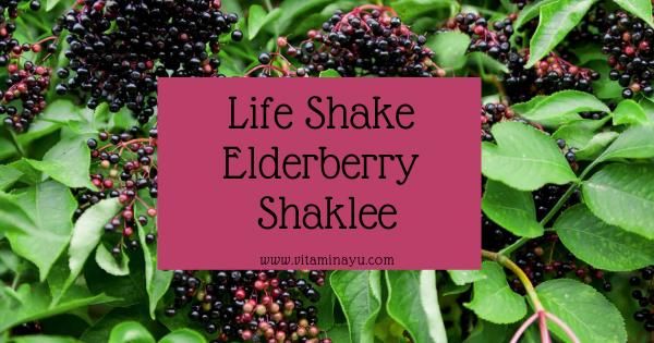 Life Shake Elderberry Shaklee: Manfaat, Keistimewaan, Resepi dan Testimoni