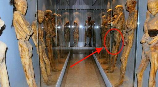 Firaun Tutankhamun Ternyata Anak Hasil Incest, Alat Vitalnya Dibalsem Posisi Tegak 90 Derajat