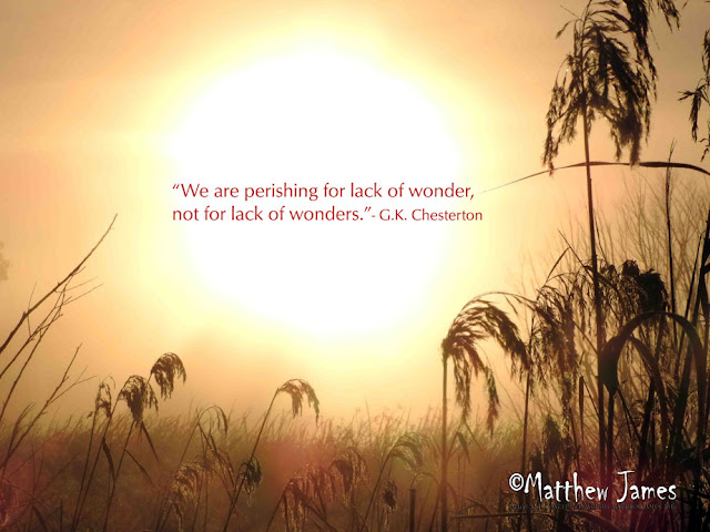 """We are perishing for lack of wonder, not for lack of wonders."" ― G.K. Chesterton"