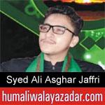 https://www.humaliwalyazadar.com/2018/09/syed-ali-asghar-jaffri-nohay-2019.html