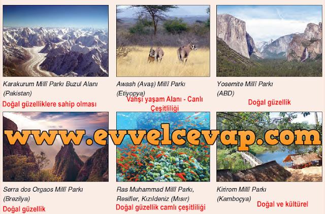 11.Sınıf Dikey Yayınları Coğrafya Ders Kitabı 168.Sayfa Cevapları