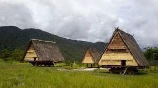Rumah adat Suku Kaili, Sulawesi Tengah memiliki ketahanan terhadap gempa dan tsunami