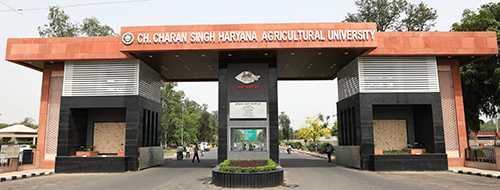 CCS HAU Hisar Haryana