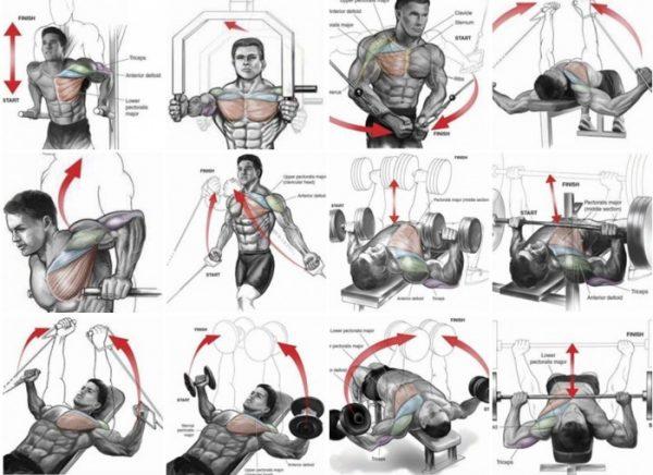 exercises-chest
