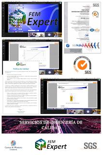 Auditoría de certificación ISO 9001 realizada de forma telemática en FEM Expert con SGS y Cuevas y Montoto Consultores