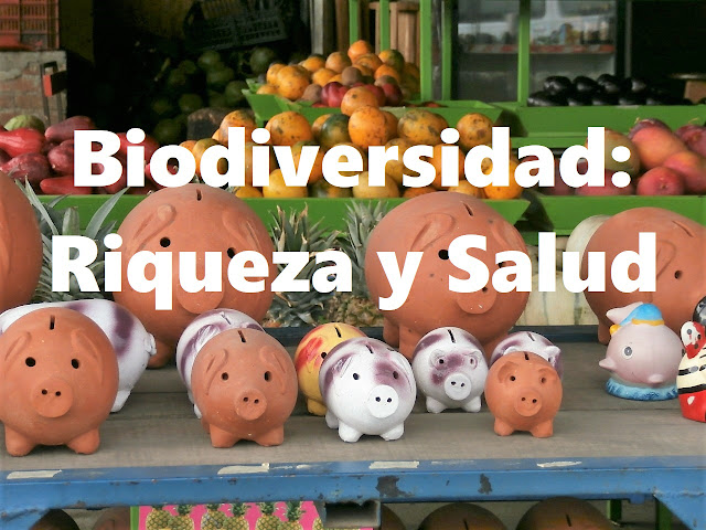biodiversidad riqueza salud