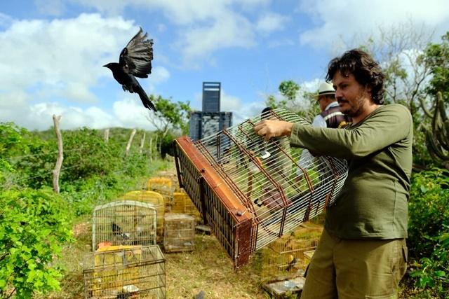 FPI do São Francisco devolve à natureza animais que estavam em cativeiros em Alagoas