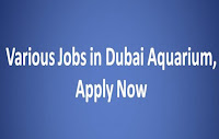 Dubai Aquarium Jobs in Various Positions
