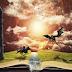 5 livros para quem gosta de fantasia