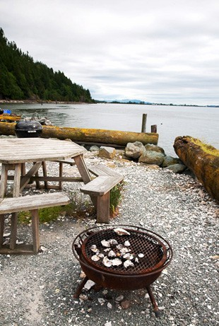 LA FOTO DEL DIA Island living in Washington State 1