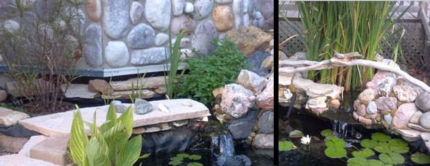Pond Veggie Filter, Bog Filters, Construction
