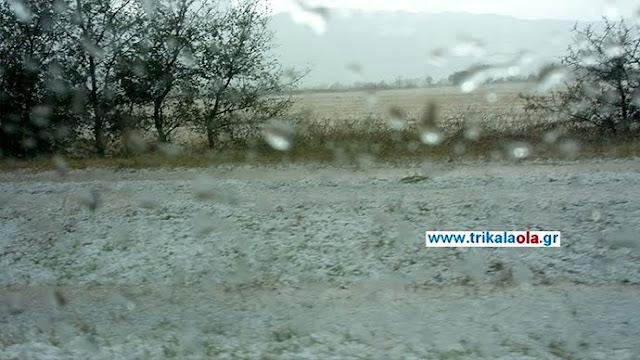 Καταστράφηκαν καλλιέργειες από το χαλάζι σε Τρίκαλα και Καρδίτσα (βίντεο)