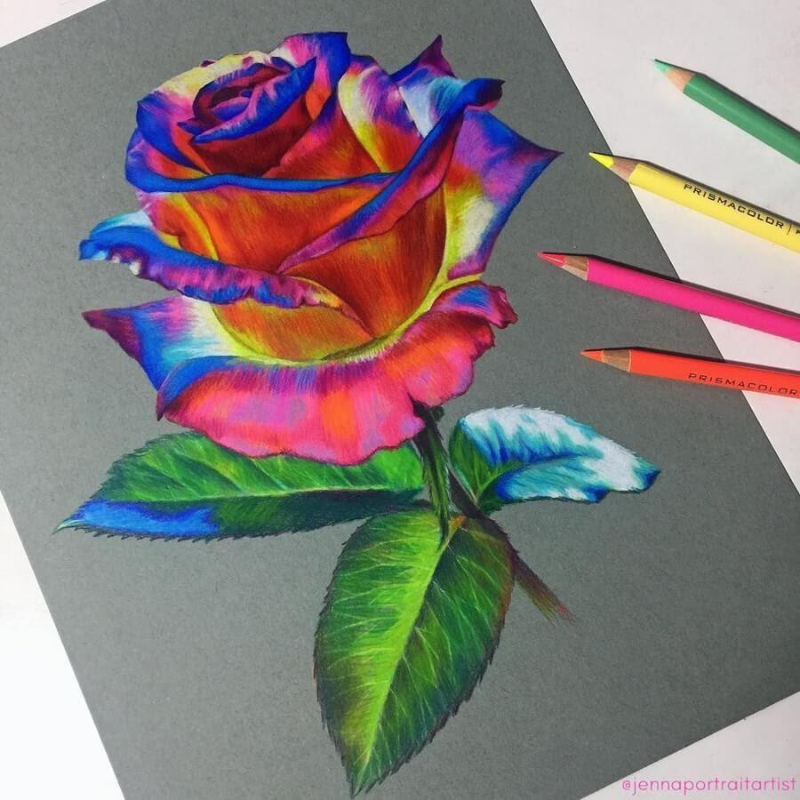 01-Red-Rose-Jenna-Very-Vivid-Colors-in-Varied-Drawings-www-designstack-co