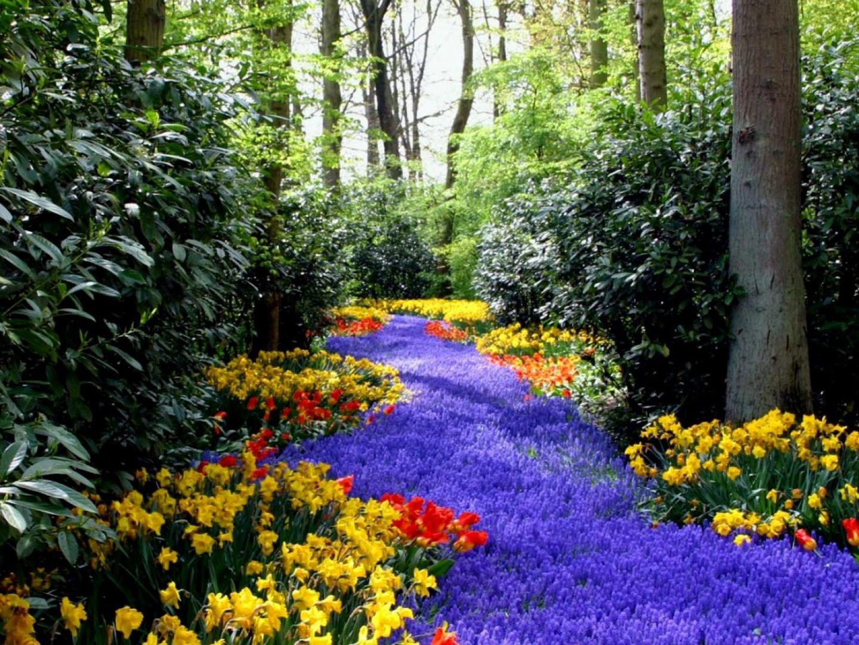 Paisajes de ensue o paisajes de flores for Jardines en primavera fotos