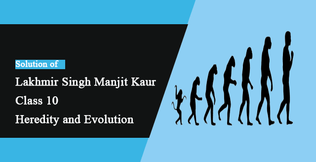 Solutions of Heredity and Evolution Lakhmir Singh Manjit Kaur LAQ, MCQ and HOTS Pg No. 210 Class 10 Biology