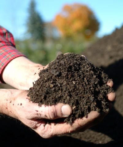 Macam Macam Pupuk Organik dan Anorganik - Achsan Blog