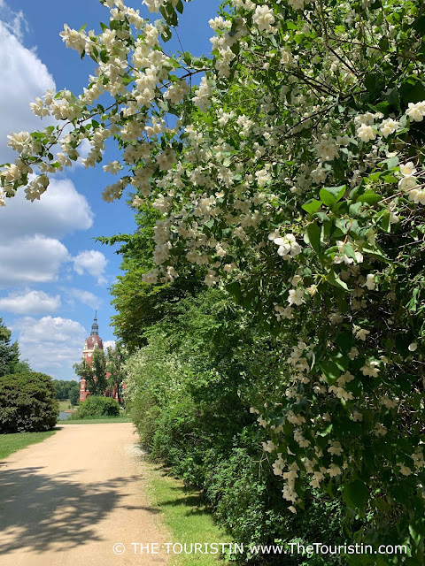 A sand paved path next to white flowering bushes with a red painted castle in the distance.