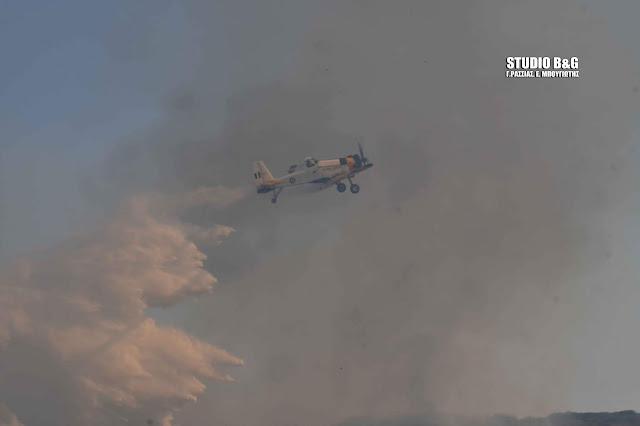 Υπό μερικό έλεγχο πυρκαγιά στη Λακωνία