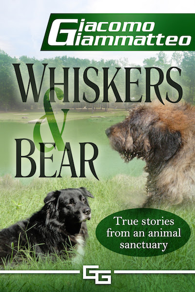 Book Review/Giveaway: Whiskers & Bear by Giacomo Giammatteo